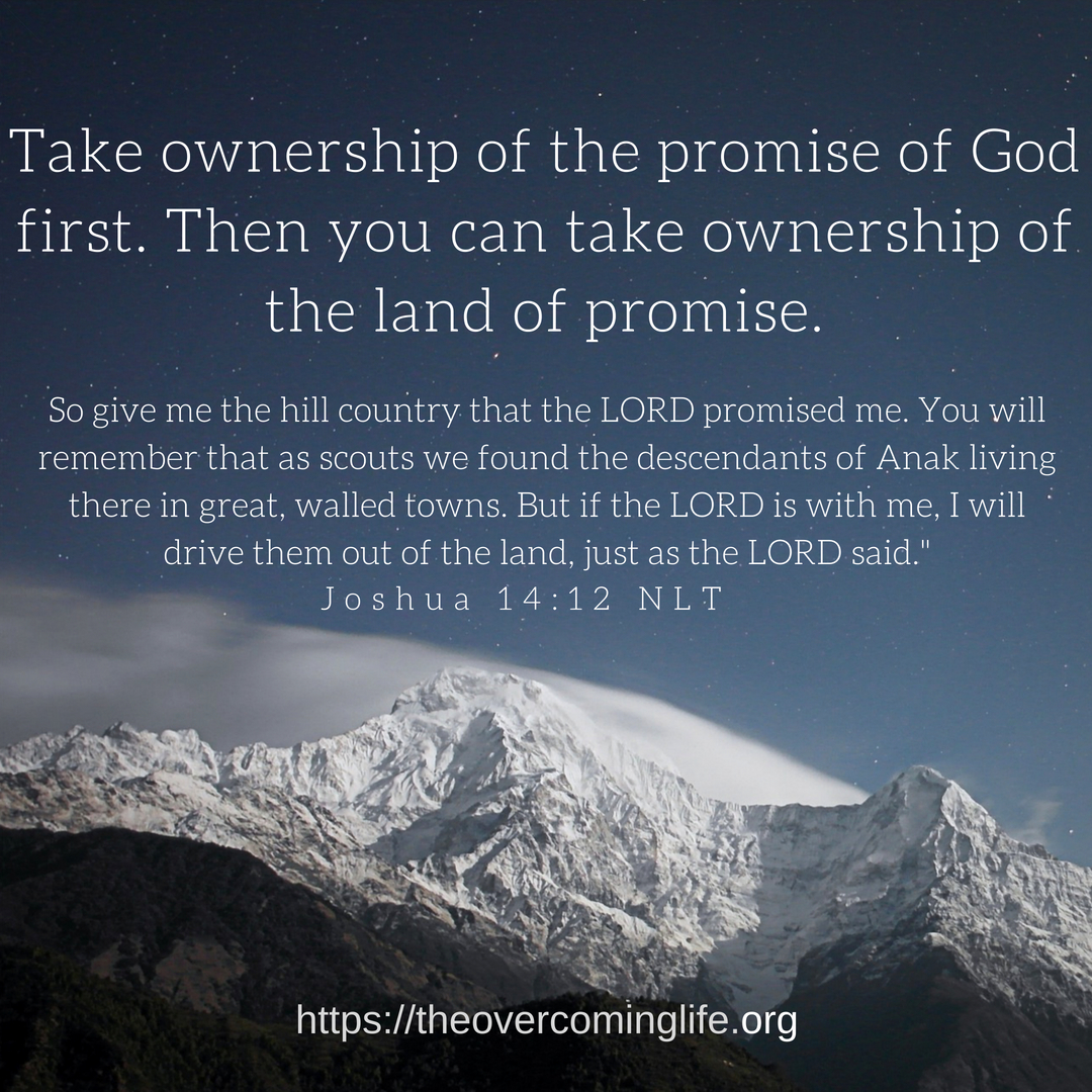 Take ownership of the promise of God first. Then you can take ownership of the land of promise.